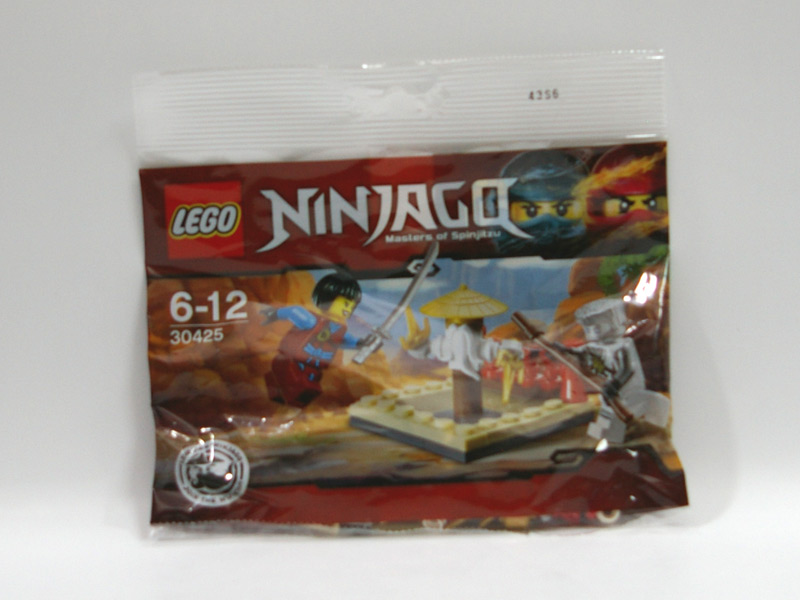 #30425 レゴ CRUマスターの道場
